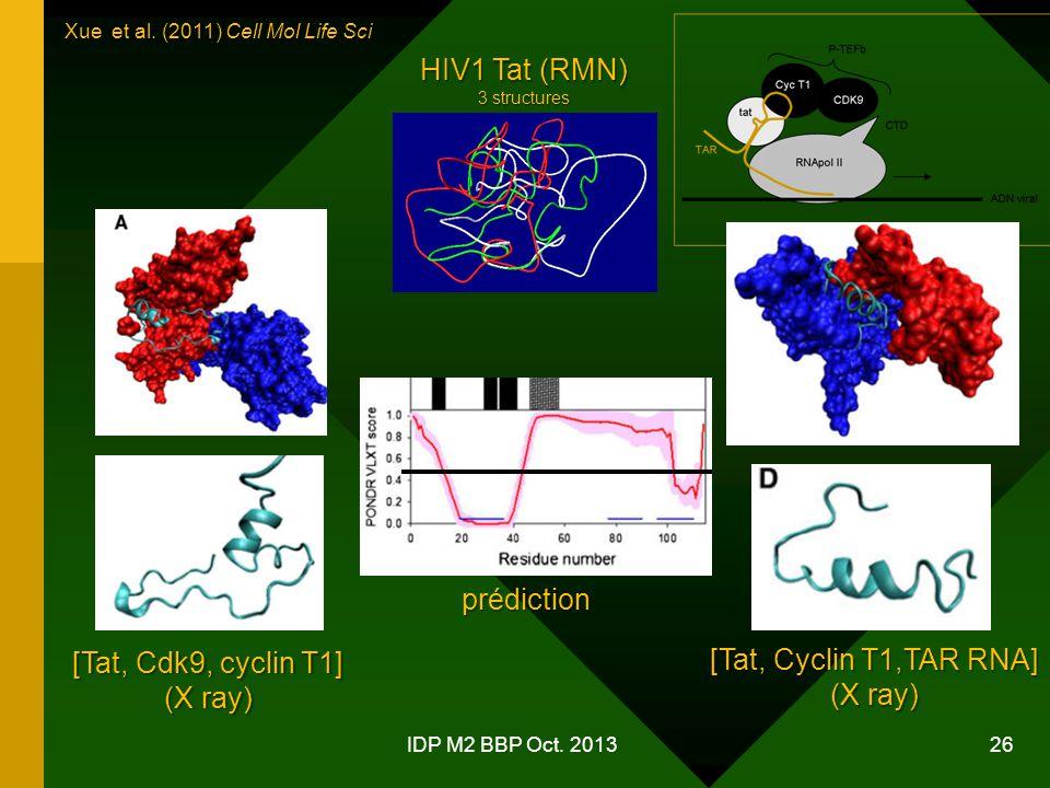 HIV1 Tat (RMN) prédiction [Tat, Cdk9, cyclin T1]